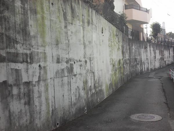 外壁にカビが生えてしまう原因と状況別対策方法 外壁塗装駆け込み寺